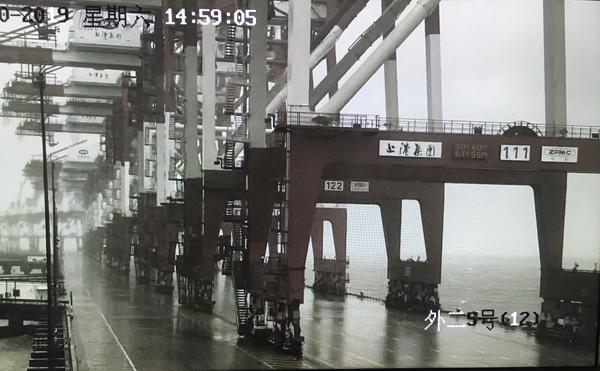 """上海港外高桥口岸国际航行船舶受""""利奇马""""影响明显 百余航船被迫改变出入境计划"""