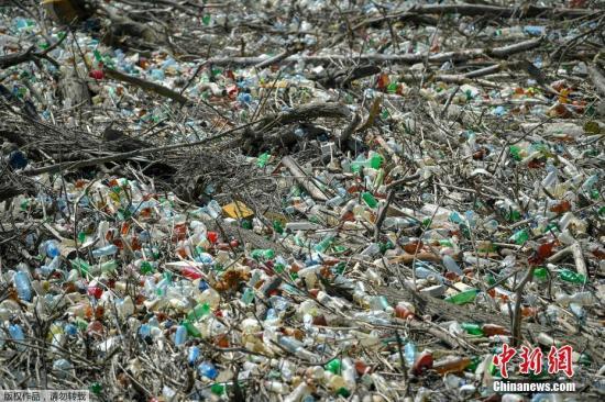 資料圖:圖爲2019年6月報道,在匈牙利Kiskore ,由於當地的梯沙(Tisza)河水位上升,數噸的浮木夾雜着塑料廢棄物漂浮在當地水電站的水域上。