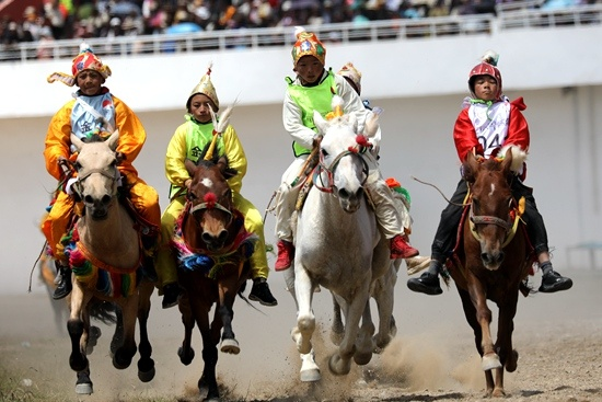 场内速度赛马比赛在那曲市赛马场举行