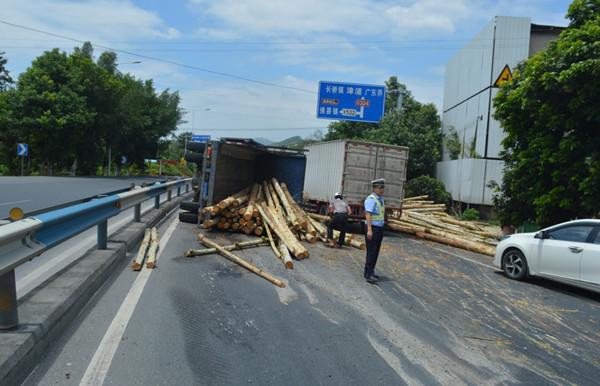 货车侧翻桉树滚一地  民警及时抢险保通畅