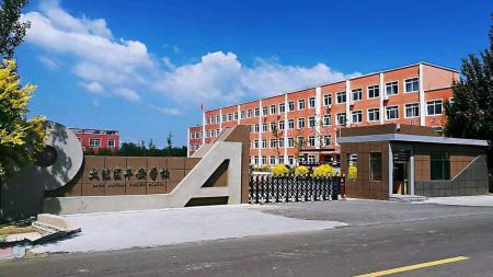 记辽宁省盘锦市大洼区平安学校素质教育
