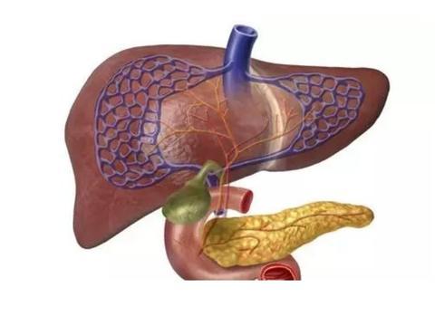 带你认识肝功能胆红素到底是怎么一回事