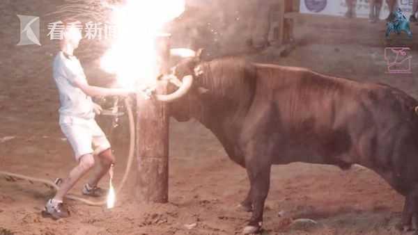 """残忍!西班牙""""火牛节""""公牛角被点燃惊恐奔逃 人群狂欢拉扯牛尾"""