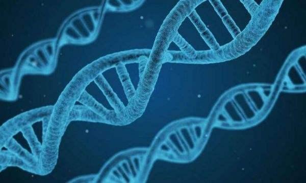 新研究:多吃盐这59个基因位点易变异,与心血管疾病相关