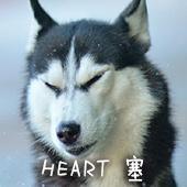搞笑单身狗恶搞表情包,你叫破喉咙 也没人来救你!