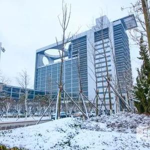 准大学生|带你感受中国石油大学(华东)四季冷暖