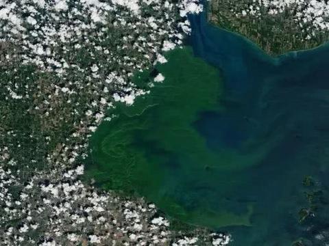 美卫星发现美加边境湖泊狂变绿,美专家忧心:或是个不好的开始