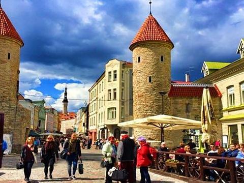 有稀土不开采的爱沙尼亚,脱苏后用20年成发达国家,税点欧洲最低