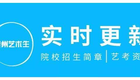 贵州省2019年高考艺术类高职院校录取情况