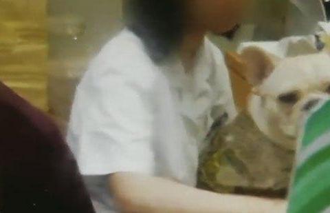 又是临时工!医务人员带宠物狗上班,惊呆就诊患者