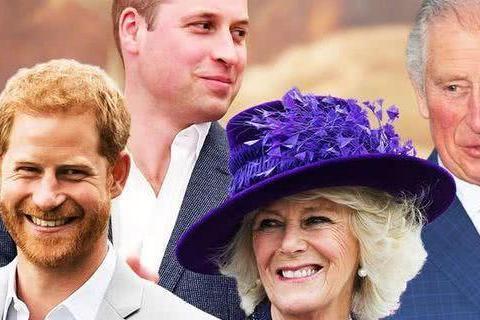 卡米拉抢走戴安娜王妃老公,却和戴安娜的两个儿子友好相处