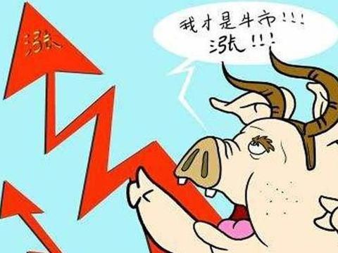8.18牛市!猪价涨势不止,全国19省继续上涨