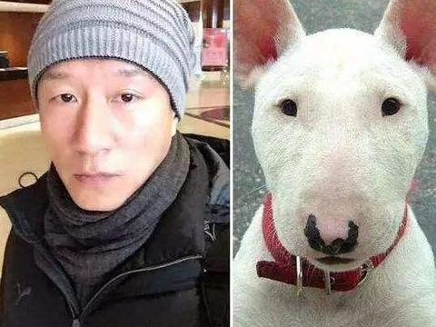 《极限挑战》拍摄5季,黄磊与孙红雷的关系,暴露在了《小欢喜》