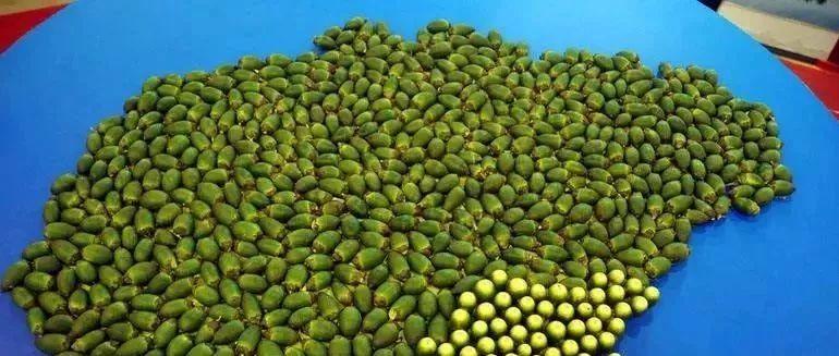 这水果被国际公认为强致癌物,我国却还有6000万人无法自拔!