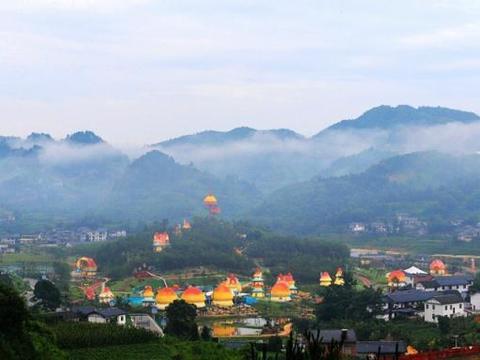 重庆万盛北部一个镇:田间地头有许多房子一般大的蘑菇,看看是啥