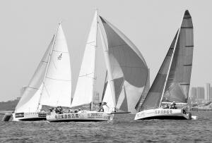 2019帆船周青岛国际帆船赛在山东省青岛市奥林匹克帆船中心落下帷幕