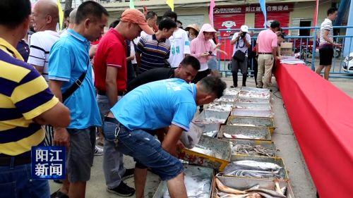 闸坡渔港:首批渔船满载返航