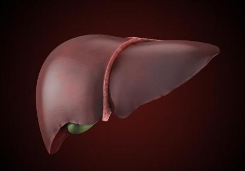 肝纤维化是什么意思?身体出现这几个提示,检查一下肝脏