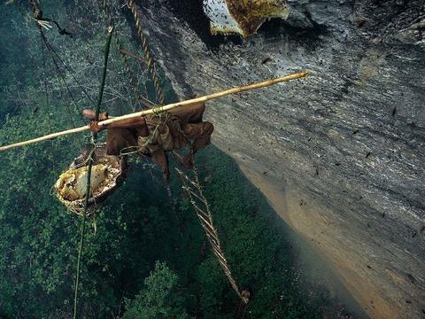这里的人为了生活,千百年来爬上万丈悬崖工作,冒死日赚200!