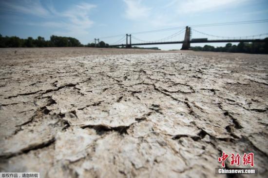 当地时间2019年7月24日,法国西部Montjean-sur-Loire,由于夏季热浪侵袭,卢瓦尔河水位持续下降,河床干涸龟裂。