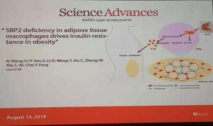 贵州百灵发现糖尿病新治疗靶点 探索院内制剂方式