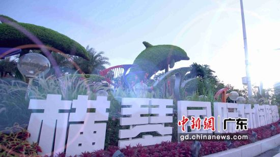 横琴新区内的旅游企业将按15%税率征收企业所得税
