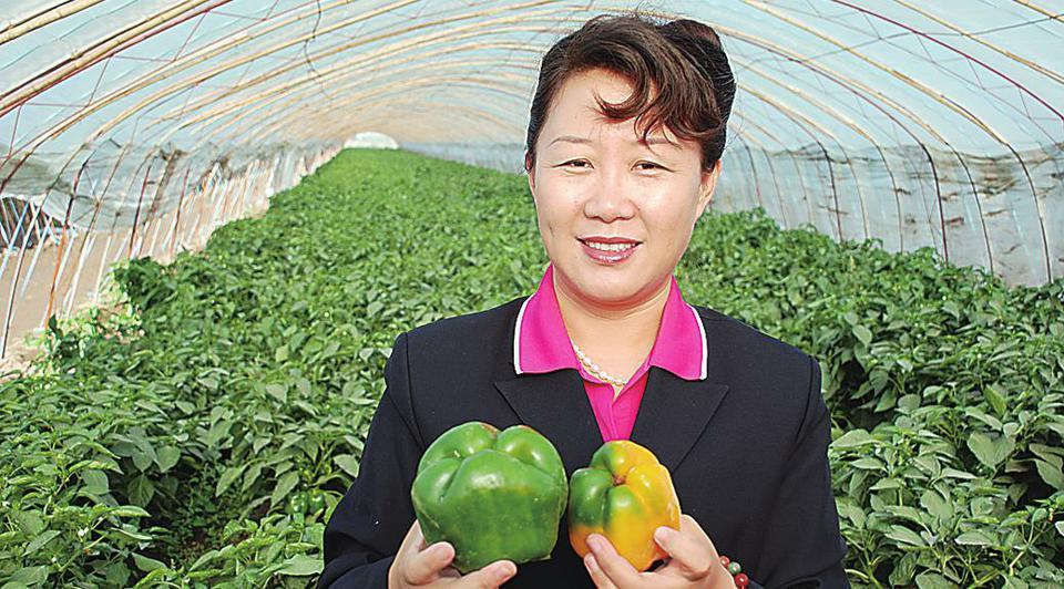 高华山:带领农民走上绿色致富路