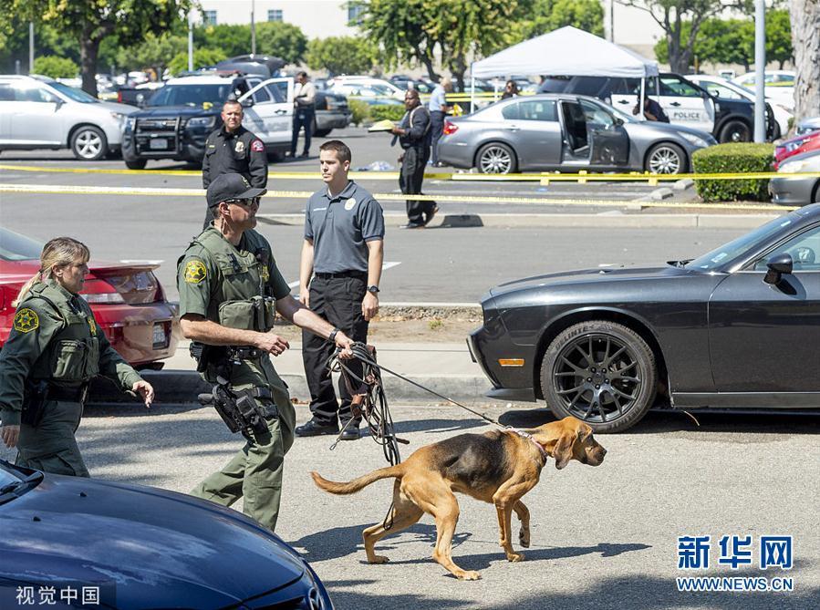 美国加州一大学退休行政人员被刺死 警方展开调查