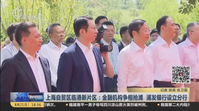 上海自贸区临港新片区:金融机构争相抢滩  浦发银行设立分行