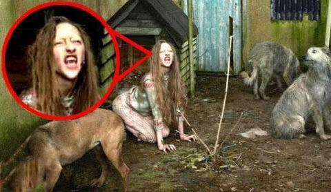 乌克兰弃婴被狗养大,喝狗奶长到8岁,长大后还想继续当狗