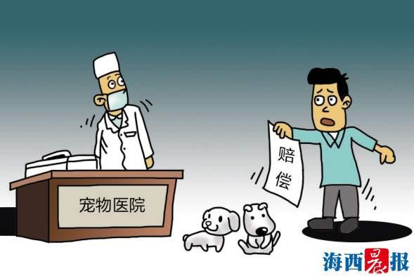 宠物医院要赔3.6万元?思明法院对此案这样宣判