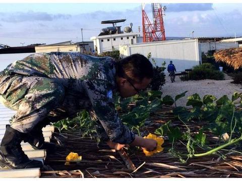 非洲贫穷落后,因为黑人懒还是土地贫瘠?中国维和部队种的菜亮了