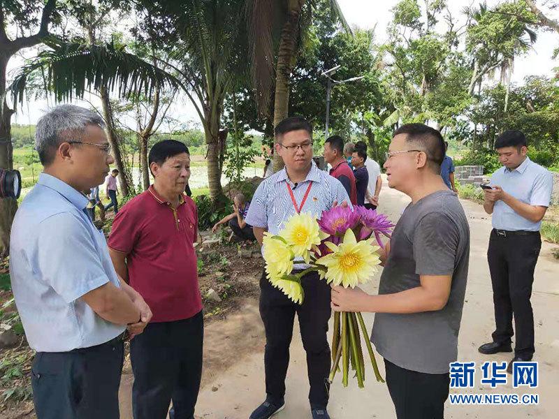 公司+农户 海口市美兰区大林村发展香水莲花产业