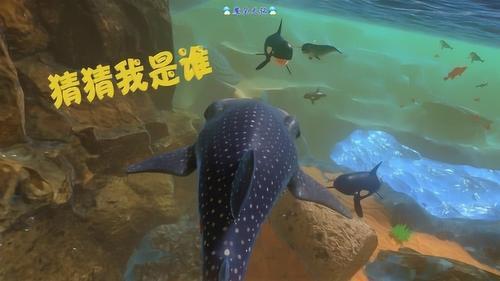 天铭 海底大猎杀 第二季 46 萌萌小胖胖 鲸鲨
