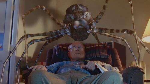 老人用虫子喂养蜘蛛,结果却导致蜘蛛变异,整个小镇都沦为了粮仓