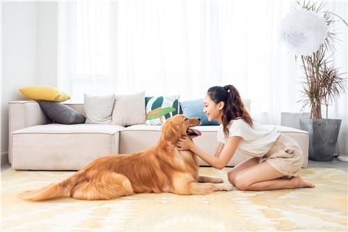 宠物消费市场规模惊人 家电业能否分一杯羹?