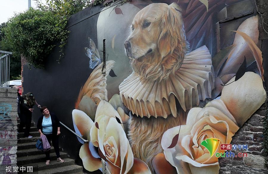 爱尔兰举办街头艺术节 民众欣赏大幅涂鸦