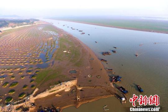 """旱灾致江西42.7万人受灾 """"五河一湖""""水位均低于多年均值"""