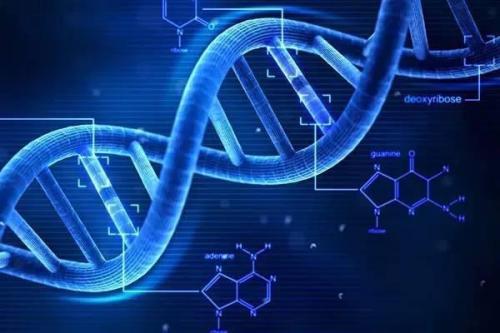 纪念国际知名遗传学家谈家桢,全球华人遗传学家齐聚复旦大学,探讨遗传学的技术创新与协同发展