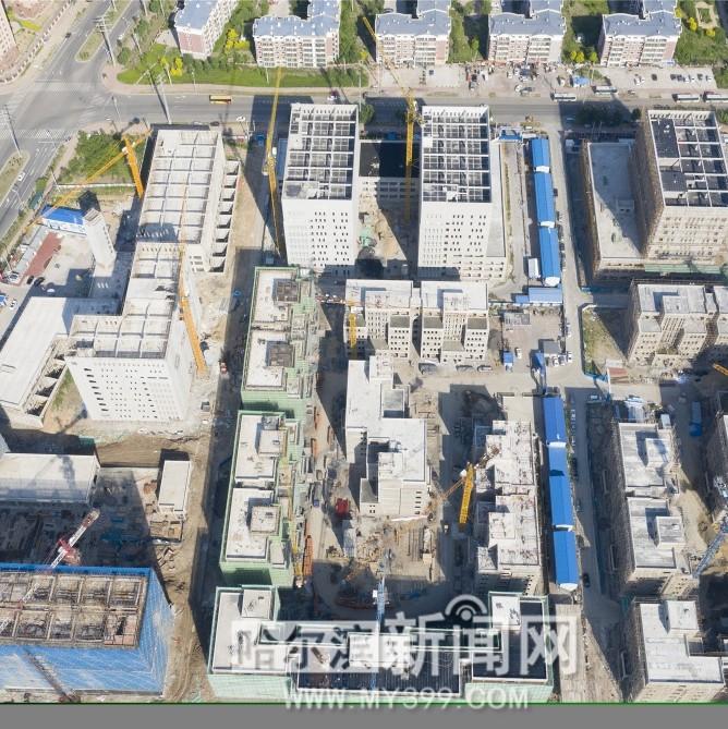 搭建赋能平台培育区域经济新业态|平房区开复工项目30个,预计完成投资18.3亿