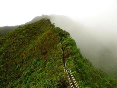 夏威夷有个通往天堂的楼梯,有4000多个台阶,比华山栈道还惊险!