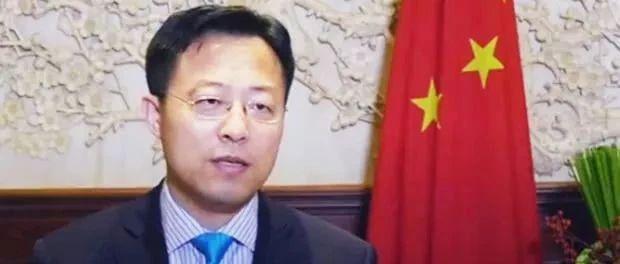 """华春莹新同事报到:推特上最红的""""战狼""""外交官"""