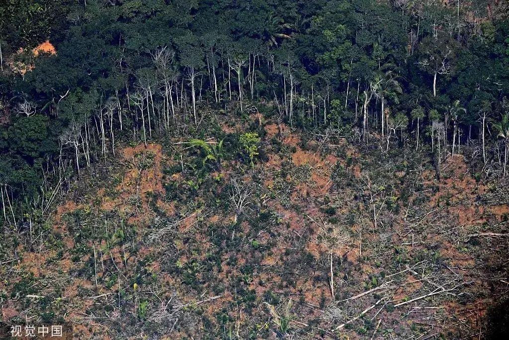 ▲当地时间8月23日,巴西北部隆多尼亚州,航拍亚马孙雨林火灾灾区。图片来源/视觉中国
