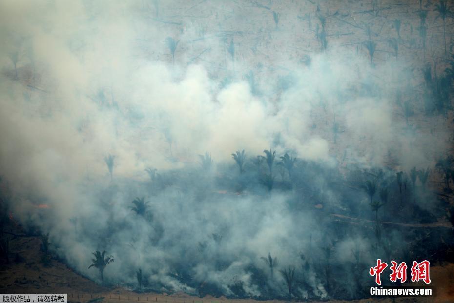 实拍巴西亚马逊雨林火灾 大火浓烟超百米实拍巴西亚马逊雨林火灾 大火浓烟超百米