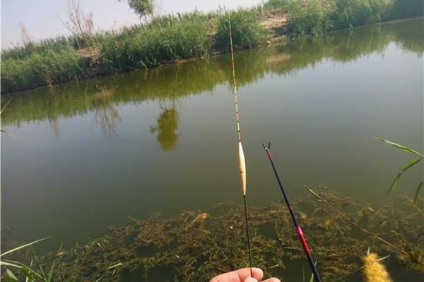 准确调漂的两大要点,调漂更准确,渔获飙升没难度!