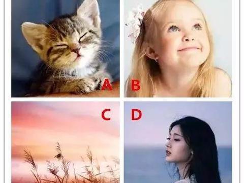 心理测试:四种头像,你会选哪个?看出你是什么样的人