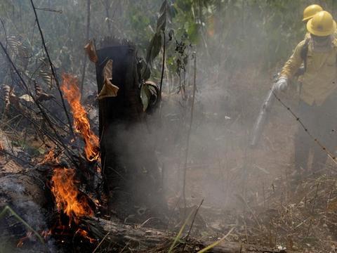 """对抗亚马逊大火 马克龙:G7领袖将达成协议""""提供技术与金援"""""""