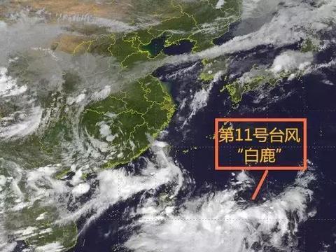 """注意!台风""""白鹿""""将正面袭击广东!杭州未来两天天气……"""