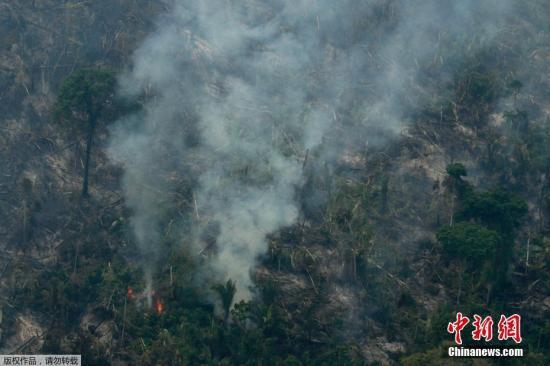 """一场大火成""""罗生门""""巴西拒外国援助亚马孙雨林"""