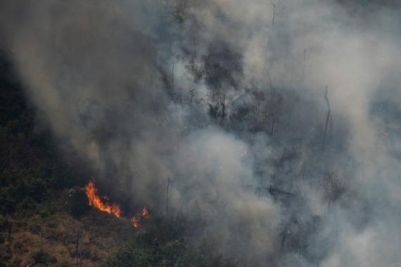 8月23日,在巴西波多韦柳附近,火焰吞噬树木。新华社 图